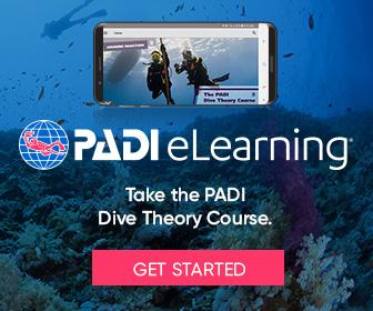PADI Dive Theory (GoPro)