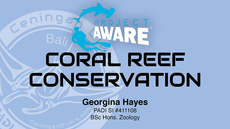 Project AWARE Coral Restoration Conservation Specialty